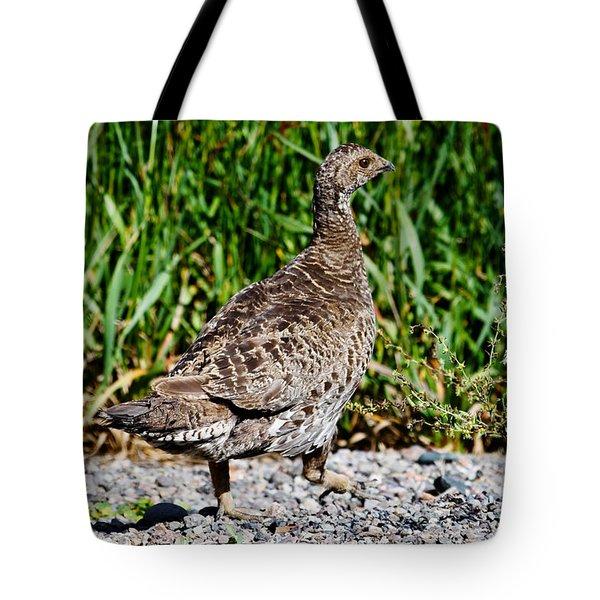 Tote Bag featuring the photograph Prairie Chicken Run by Janice Rae Pariza