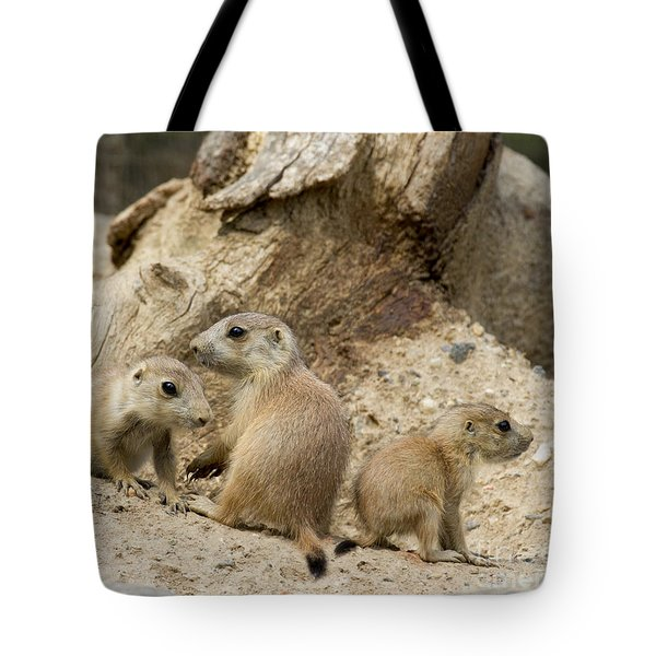 Prairie Dog Pups Tote Bag by Chris Scroggins