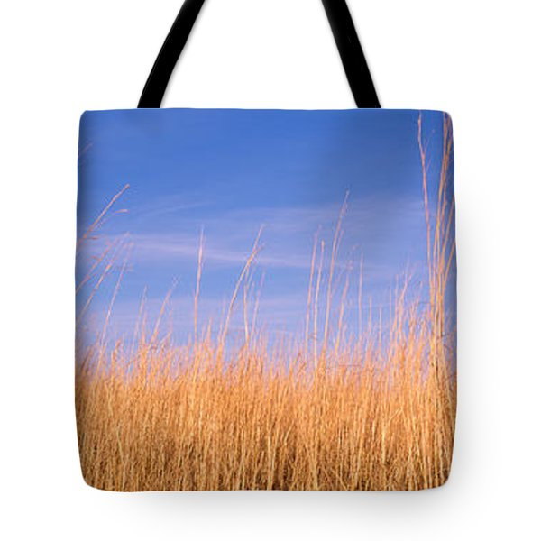 Prairie Grass, Blue Sky, Marion County Tote Bag