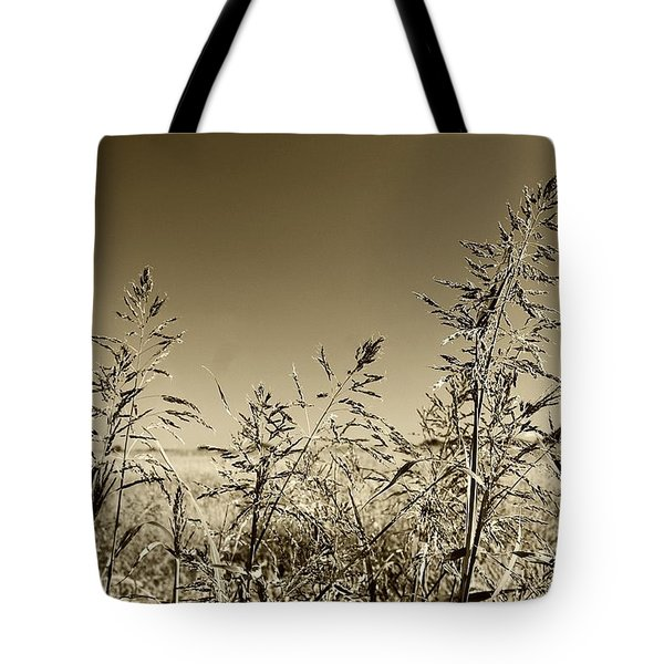 Tote Bag featuring the photograph Prairie Grass by Ellen O'Reilly