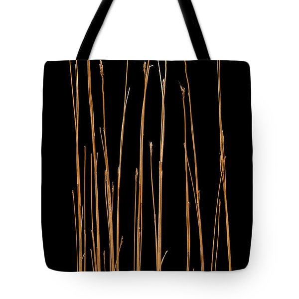 Prairie Grass Number 3 Tote Bag