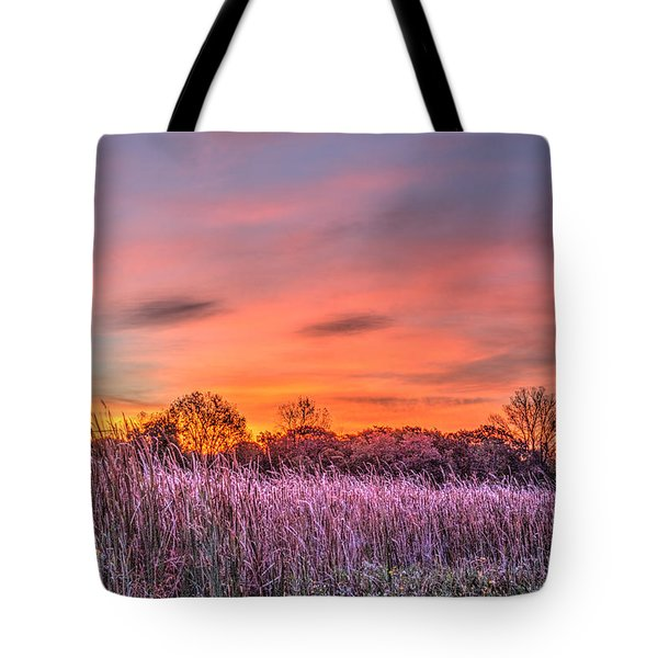 Moraine Hills State Park Moments Before Sunrise Tote Bag