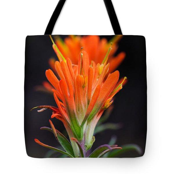 Prairie Paintbrush Flower Tote Bag