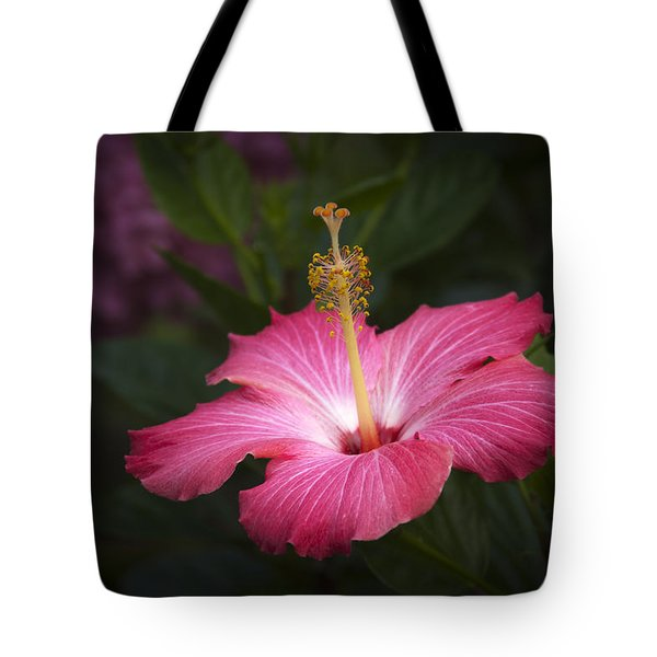 Tote Bag featuring the photograph Praise Be To God by Penny Lisowski