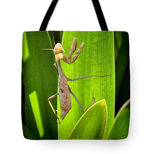 Tote Bag featuring the photograph Praying Mantis by Kasia Bitner
