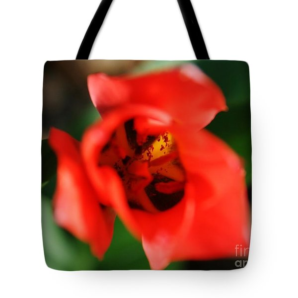 Pre-pollination  Tote Bag by Neal Eslinger