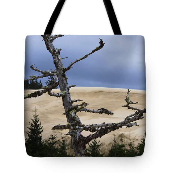 Tote Bag featuring the photograph Pre Storm by Adria Trail