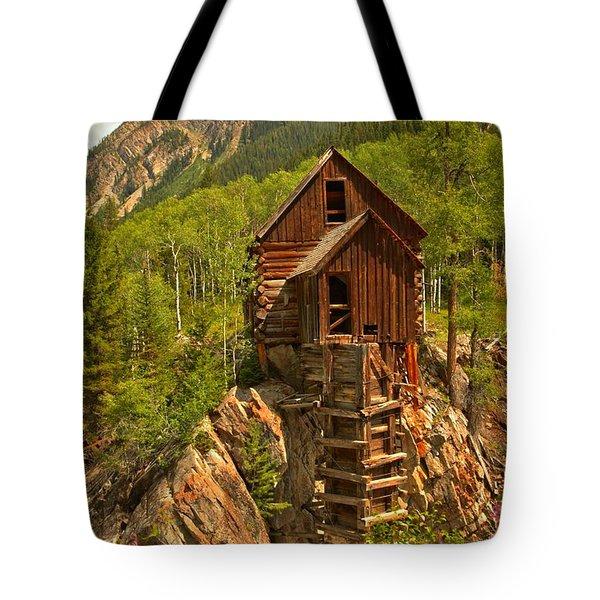 Precarious Perch Tote Bag by Adam Jewell