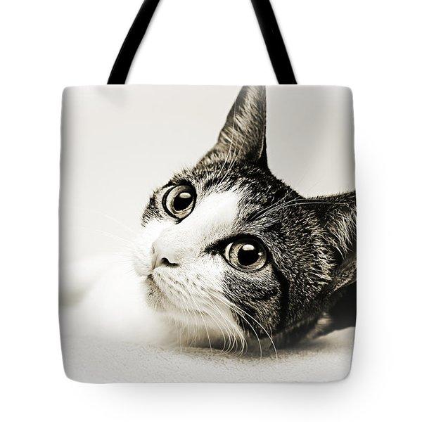 Precious Kitty Tote Bag