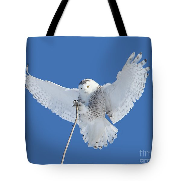 Precision Is One Of My Many Attributes Tote Bag