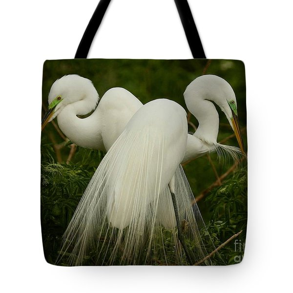 Tote Bag featuring the photograph Preening Pair by Myrna Bradshaw