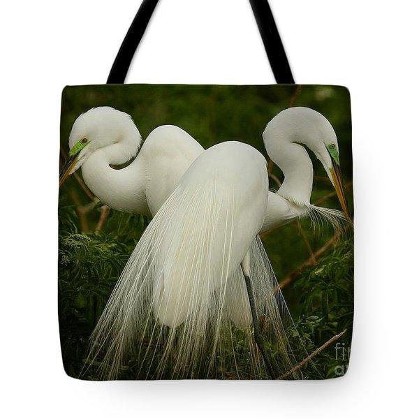 Preening Pair Tote Bag