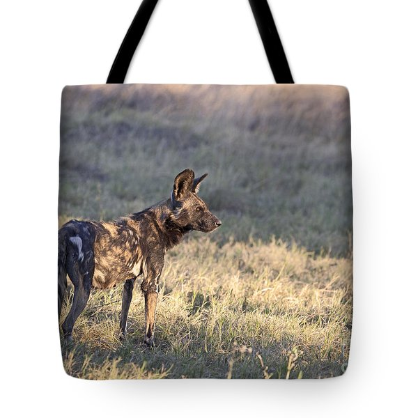 Tote Bag featuring the photograph Pregnant African Wild Dog by Liz Leyden
