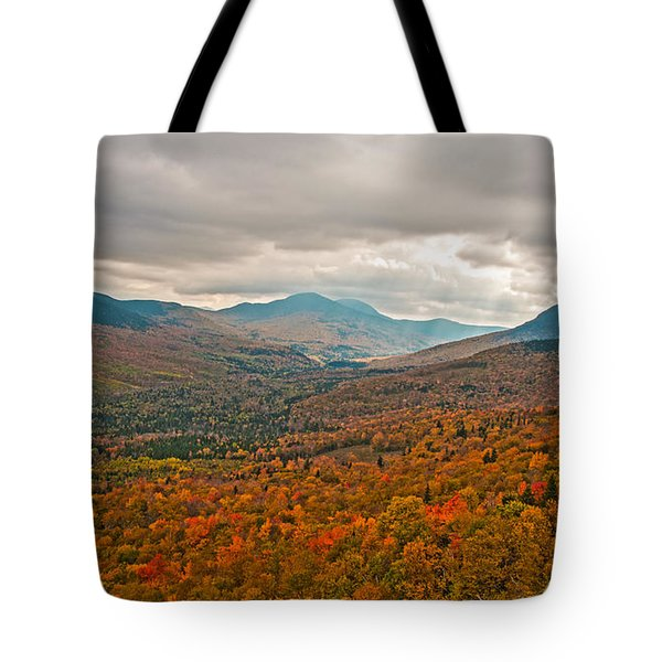 Presidential Colors Tote Bag by Brenda Jacobs