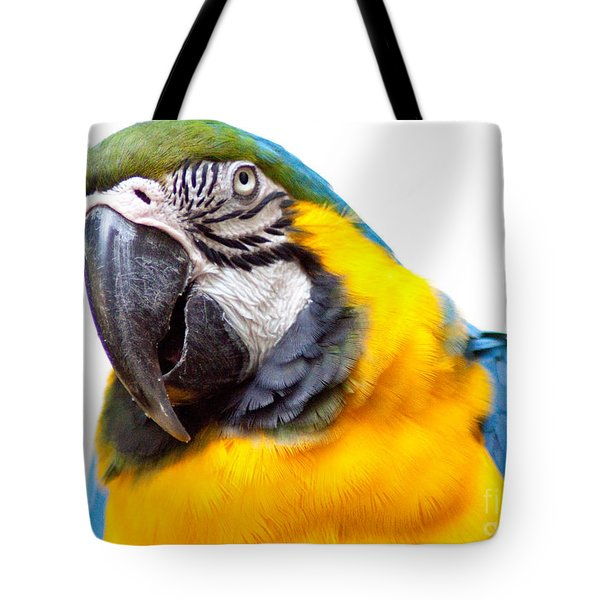 Tote Bag featuring the photograph Pretty Bird by Roselynne Broussard