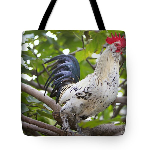 Tote Bag featuring the photograph Pretty Boy by Erika Weber