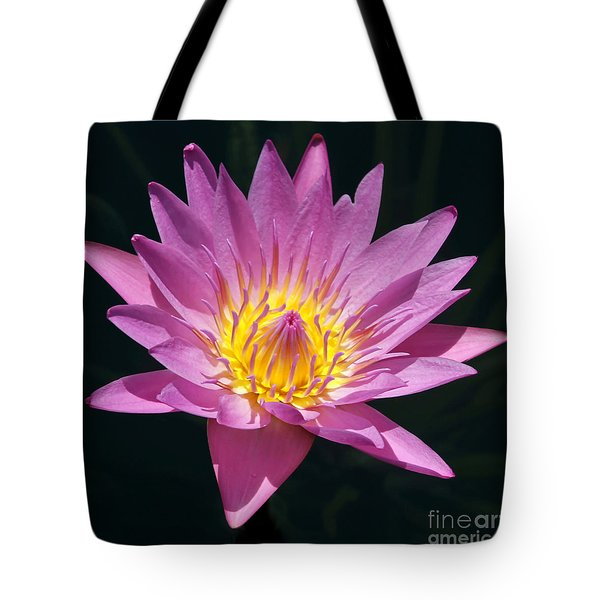 Pretty In Pink And Yellow Water Lily Tote Bag by Sabrina L Ryan