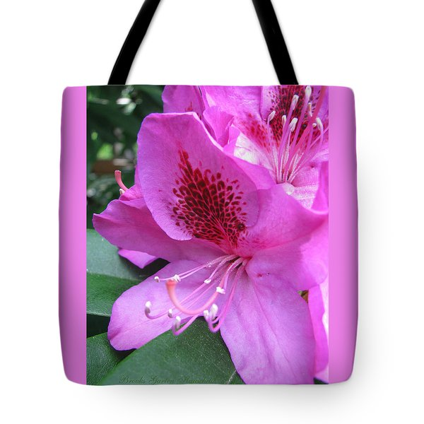 Tote Bag featuring the photograph Pretty In Pink by Brooks Garten Hauschild
