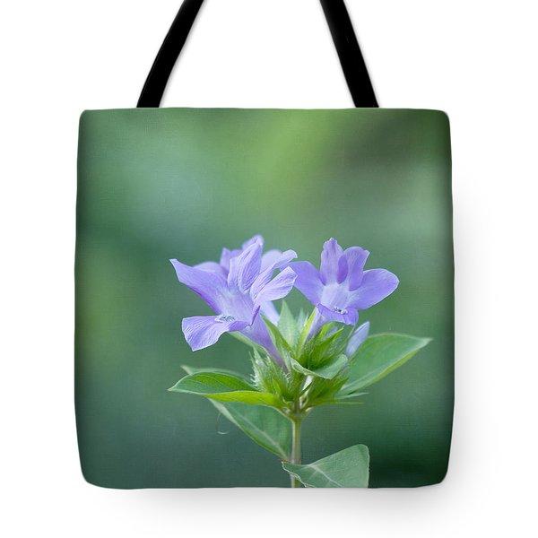 Pretty In Purple Tote Bag by Kim Hojnacki