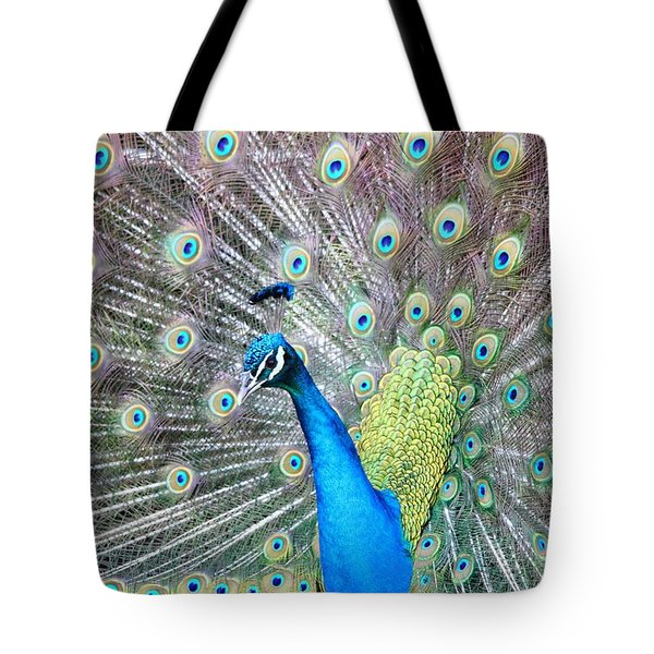 Tote Bag featuring the photograph Pretty Peacock by Elizabeth Budd