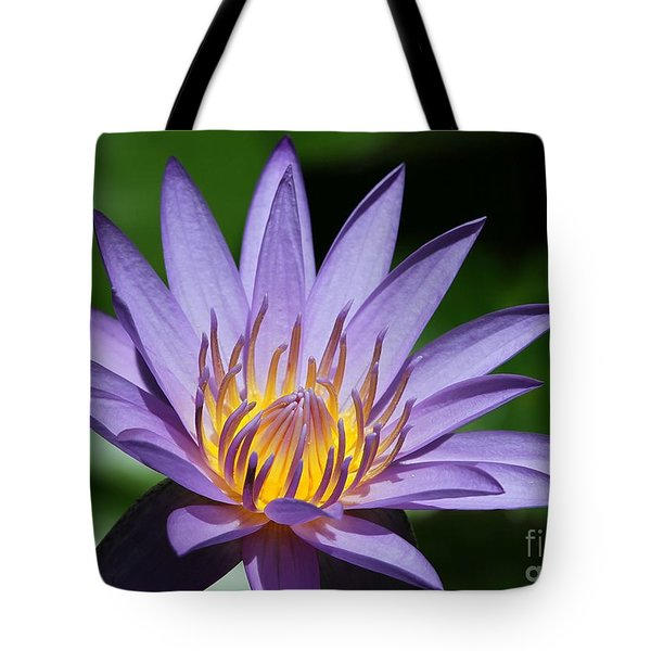 Tote Bag featuring the photograph Pretty Purple Petals by Sabrina L Ryan