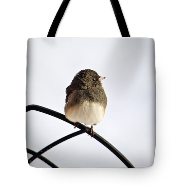 Pretty Winter Junco Tote Bag by Christina Rollo