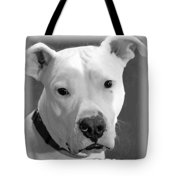 Tote Bag featuring the photograph Prettyboy by Robert McCubbin