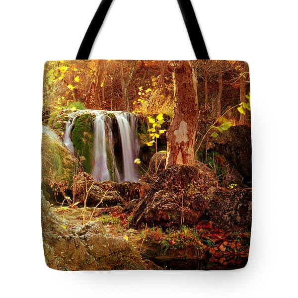 Price Falls 2 Of 5 Tote Bag by Jason Politte