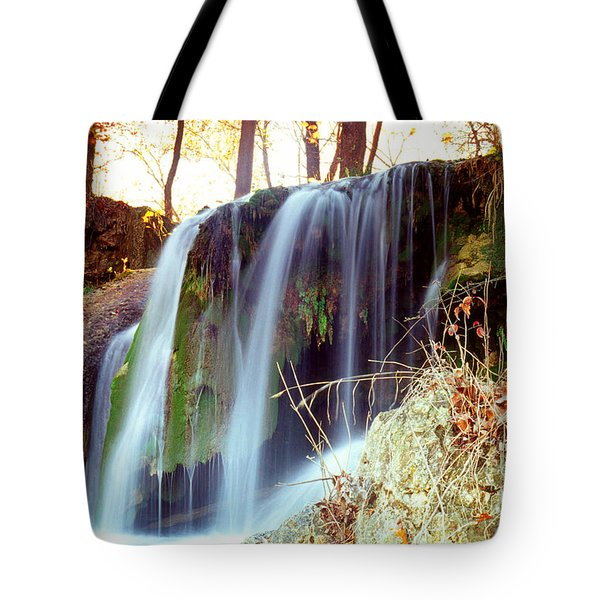 Price Falls 5 Of 5 Tote Bag by Jason Politte
