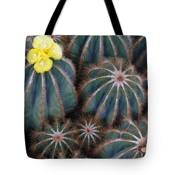 Tote Bag featuring the photograph Prickly Beauties by Evelyn Tambour