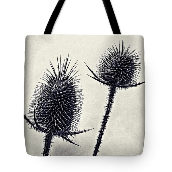 Tote Bag featuring the photograph Prickly by John Hansen