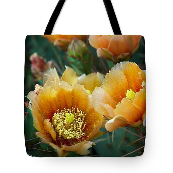 Prickly Pear Cactus Tote Bag