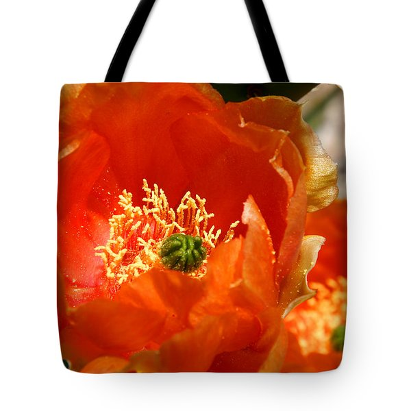 Prickly Pear In Bloom Tote Bag by Joe Kozlowski