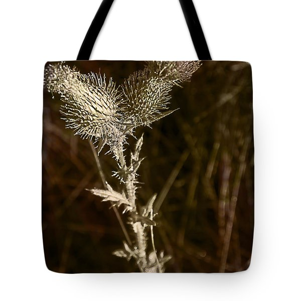 Prickly To The End Tote Bag by Jo-Anne Gazo-McKim