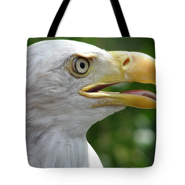 Pride Tote Bag by Randy J Heath