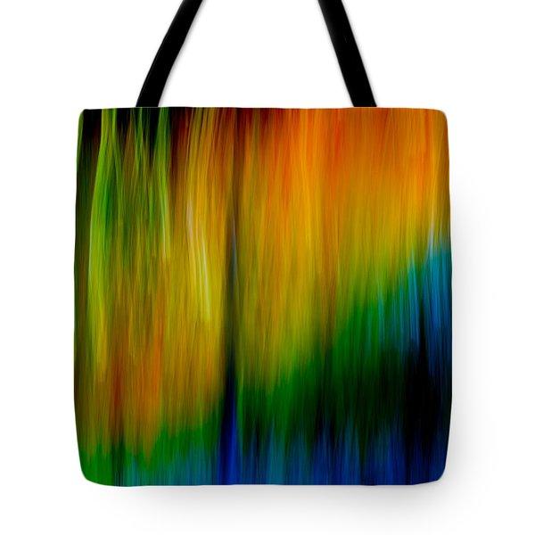 Primary Rainbow Tote Bag