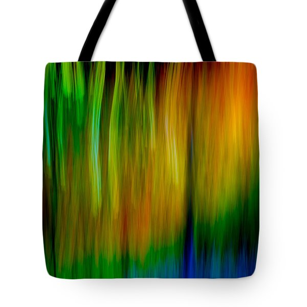 Primary Rainbow Tote Bag by Darryl Dalton