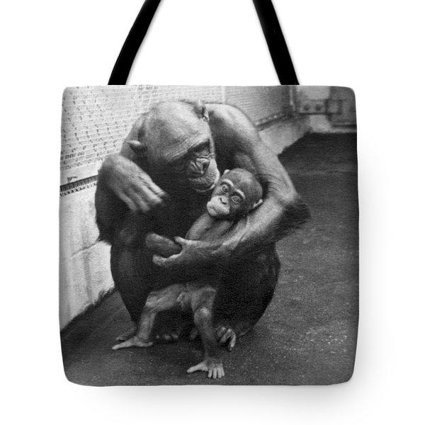 Primate Discipline Tote Bag