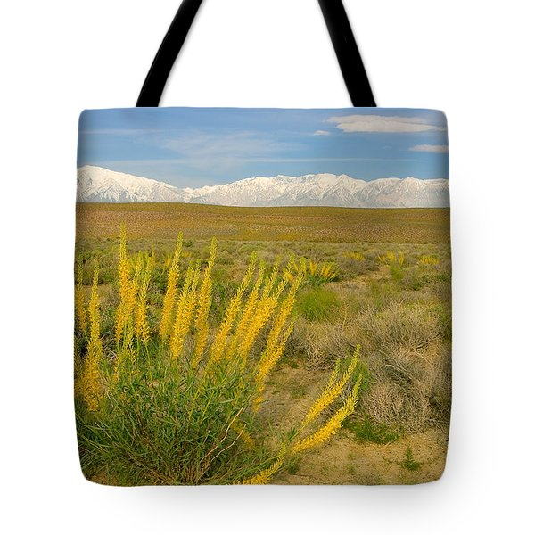 Princes Plume And Mount Tom - Spring Wildflowers Owens Valley Eastern Sierra California Tote Bag