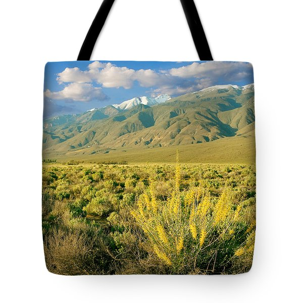 Princes Plume And White Mountains - Owens Valley California Tote Bag
