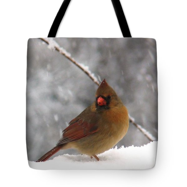 Princess In The Snow Tote Bag