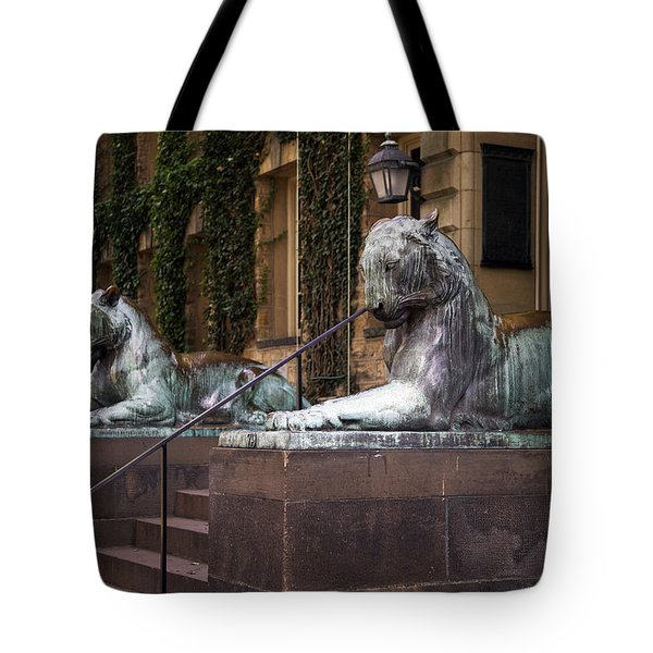 Princeton Tigers Tote Bag