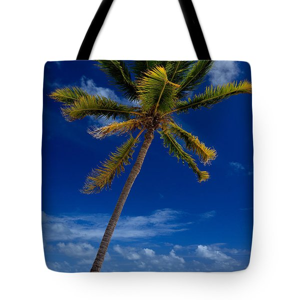 Pristine Tropical Beach  Tote Bag by Karen Lee Ensley