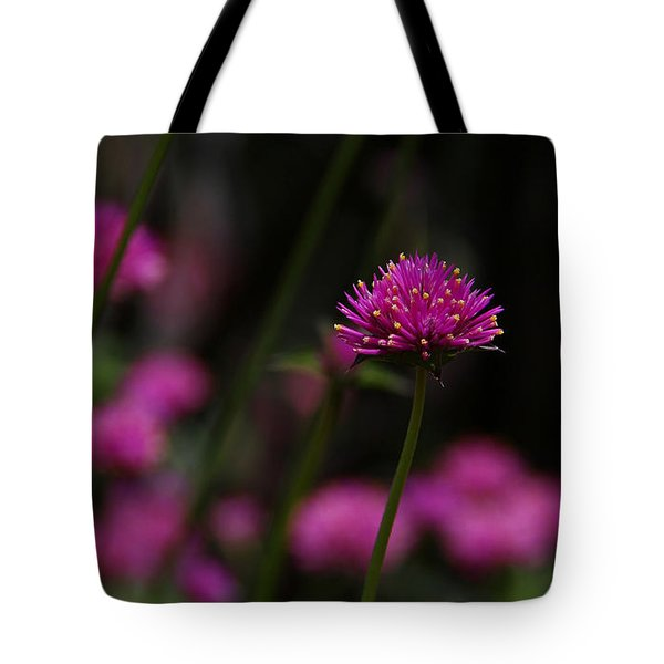 Pretty In Pink Tote Bag by Yvonne Wright