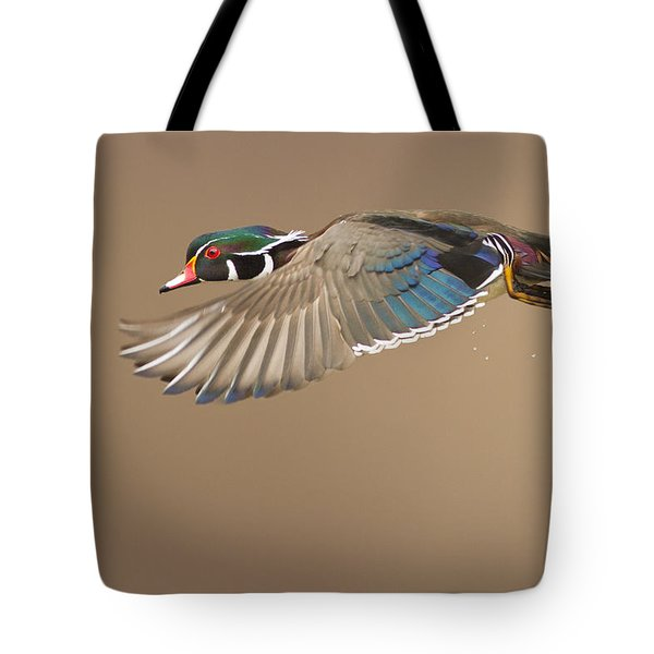Probably The Most Beautiful Of All Duck Species Tote Bag by Mircea Costina Photography