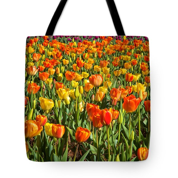 Profusion Of Tulips Biltmore Estate Nc Tote Bag