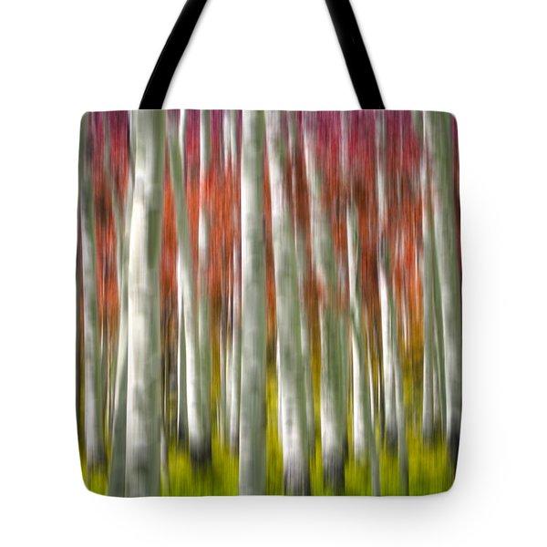 Progression Of Autumn Tote Bag by Adam Romanowicz