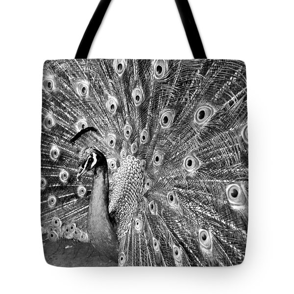 Proud Peacock Tote Bag by Sean Davey