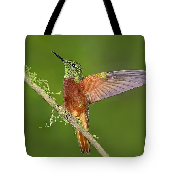 Proud Tote Bag by Tony Beck