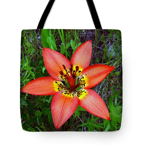 Tote Bag featuring the photograph Prairie Lily - Lilium Philadelphicum by Blair Wainman